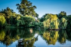 Prickend Pond