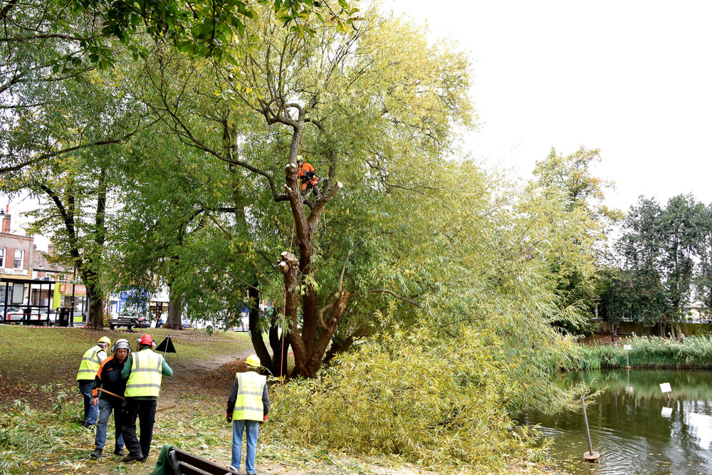Urgent work carried out at Prickend pond